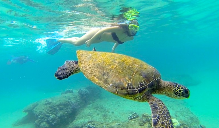 Best Vacation Spots Warm Weather Vacations Maui Vi