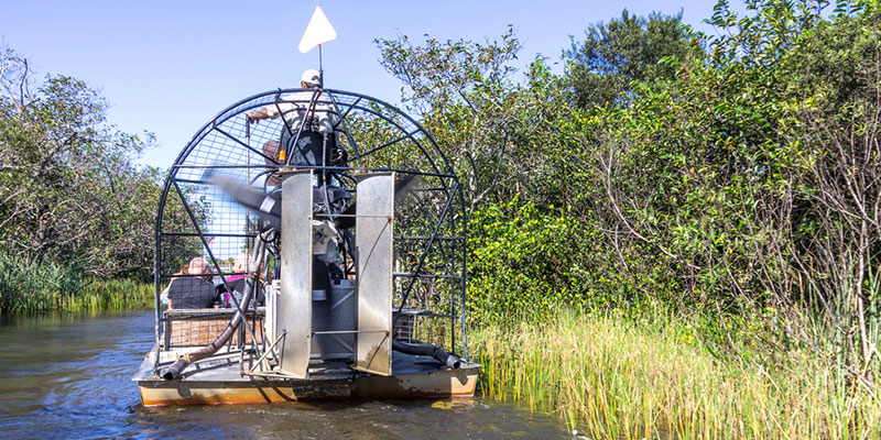 Home To The Treasure Coast Everglades Vero Beach Is Destination Get Your Adrenaline Pumping During An Airboat Tour You Ll Explore St Johns