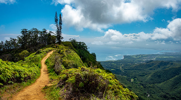 Waihe'e Ridge Hiking Trail on Maui