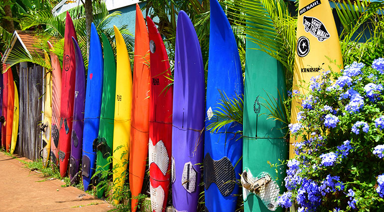 Colorful surfboards in a row
